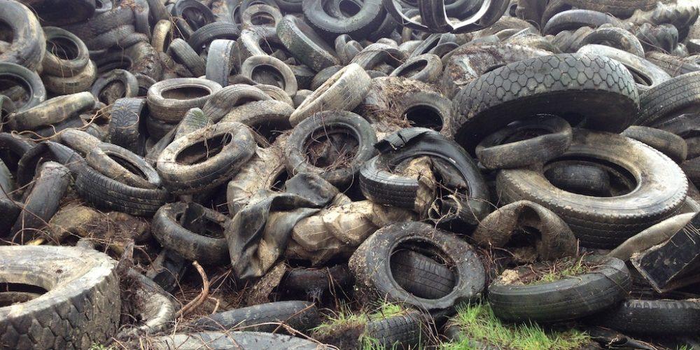 Piemonte: Legambiente ed EcoTyre insieme per la raccolta gratuita di PFU abbandonati nell'ambiente