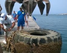 Raccolti più di 3.300 PFU a Pantelleria, Lampedusa e Ustica